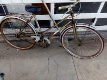 Bicicleta semicursiera adulti