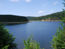 Terenuri Belis la lac si in comună! 9900mp