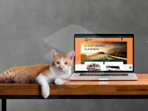 Creare site prezentare, Creare magazin online , Mentenanta
