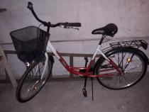 Bici Bicicletă dama