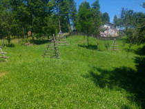 Teren intravilan in Valea Doftanei Tesila 2000mp