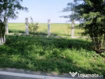 Concesiune sau arenda teren agricol bio Tulcea 750 ha