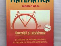 Exercitii si probleme de matematica pentru cls a XI-a,Burtea