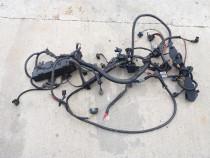 Instalatie electrica motor BMW E46 N42 valvetronic