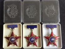 Insigne Romania - Rusia 1963-1980