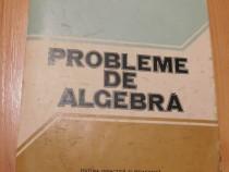 Probleme de algebra de Ion D. Ion, Constantin Nita