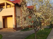 Vila moderna, 4 camere, P+1E, curte superba,langa parc Bucov