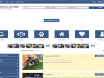 Afacere-web site de anunțuri