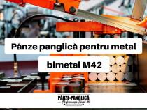 Panza fierastrau banzic panglica, MASTER 2450x27x8/12
