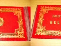 B269-I-Album Foto Souvenire de Belford anii 1900-1930.
