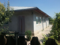 ID:17504, Casa si teren , Gheorghe Doja, Ialomita