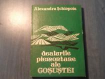 Dealurile piemontane ale Gosustei de Alexandru Schiopoiu