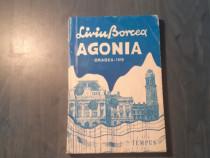Agonia Oradea 1919 de Liviu Borcea