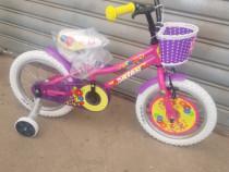 Bicicleta DAISY