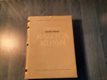 Omagiu acad. prof. Raluca Ripan