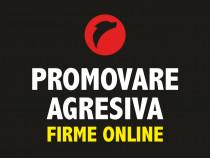 +Promovare agresiva online site firme pe: google facebook