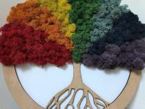 Pomul vietii cu licheni in culori superbe!