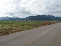 Teren 14300 mp