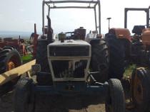 Tractor lamborghini 804