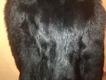 Haină franțuzească din blană de bizon naturala