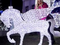 Iluminat festiv profesional, decor primarii, case, targuri