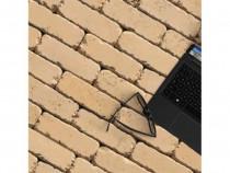 Pavaj Star Brick StarStone