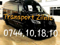 Transport zilnic germania belgia olanda persoane auto