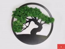 Decorațiuni cu licheni