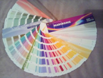 Paletar preparare culori