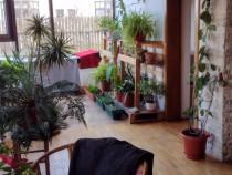 Casa moderna, noua, zona Zavoi Deva, Hunedoara