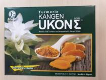 Turmeric Kangen Ukon Enagic