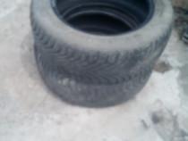 Anvelope Pirelli VARA IARNA 205/55 R16