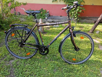 Bicicleta Gudereit Sx-s Sportline Onroad Alfine 1x11 viteze