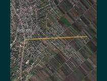 Teren intravilan Comuna Berceni 10000mp