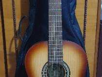 Chitară Hora Reghin + accesorii