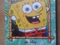 Spongebob Pantaloni Patrati - SEZONUL 1 - 6 DVD-uri Dublate