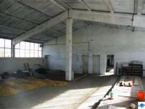 Inchiriez hale productie sau depozitare ilanga Aeroport
