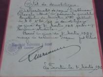 Bilet de demobilizare *1918/divizia ii cavalerie*regimentul