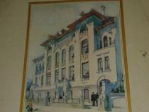Ramuri 1905-1980 volum jubiliar-75 de ani de la aparitie