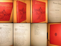 Julius Wolf-Zburatorul olandez an 1887 carte veche germana.