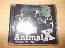 Animal X - Sambure de drac