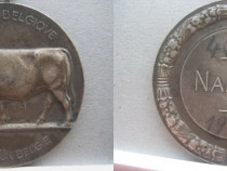 Medalia veche NAMUR Belgia 1941. Metal argintat. Stare buna.