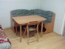 Apartament 1 camera Bucsinescu
