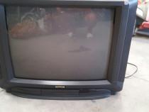 Televizor nippon