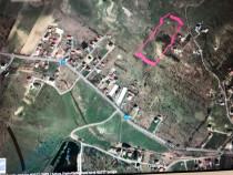 Teren valea Sigmirului 10000mp