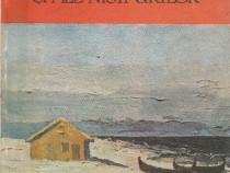 Oglinzile apelor si ale nisipurilor, Gh.D.Vasile