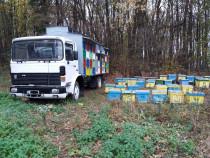 Camion apicol Roman Saviem N3
