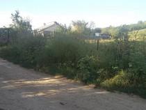 Barnova, zona superba, facilitati,parcele de la 1000-4800mp