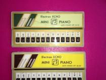 Vintage Mini Pian Electron Echo