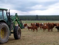 Tractorist si ingrijitor animale. valabil si pt familii